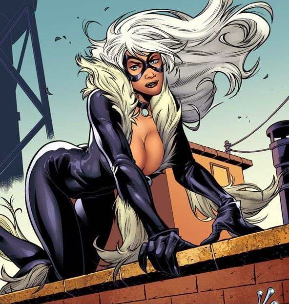 Black Cat Too Hot