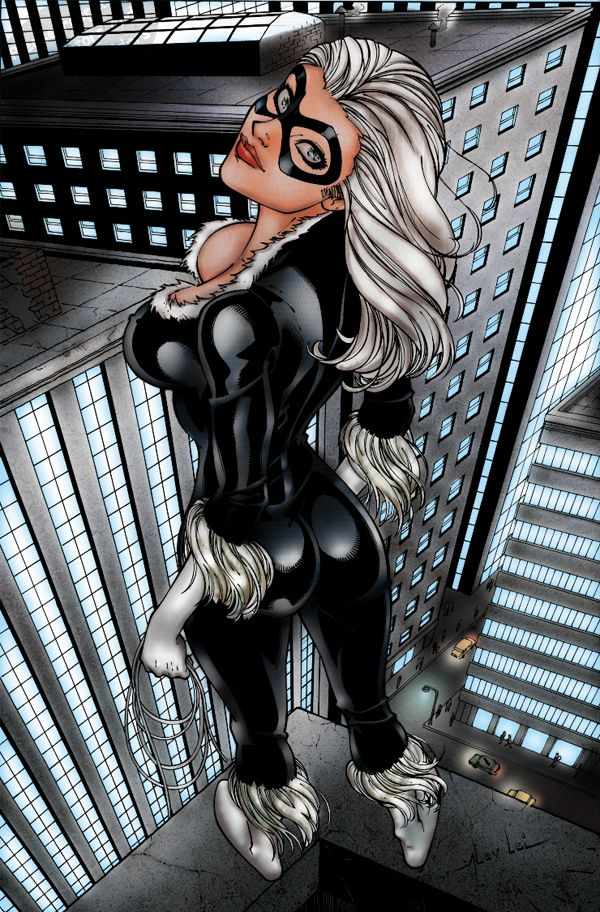 Black Cat Rooftop