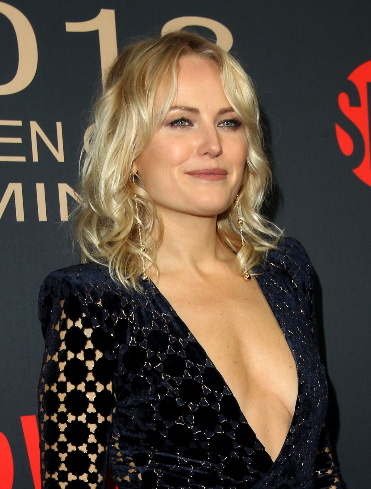 39 Hot Pictures Of Mal... Malin Akerman