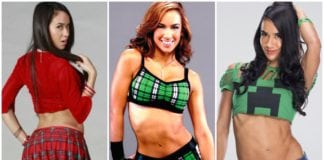 37 Hot Pictures Of AJ Lee WWE Diva