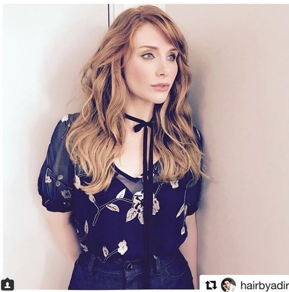 Bryce Dallas Howard Brown Hair