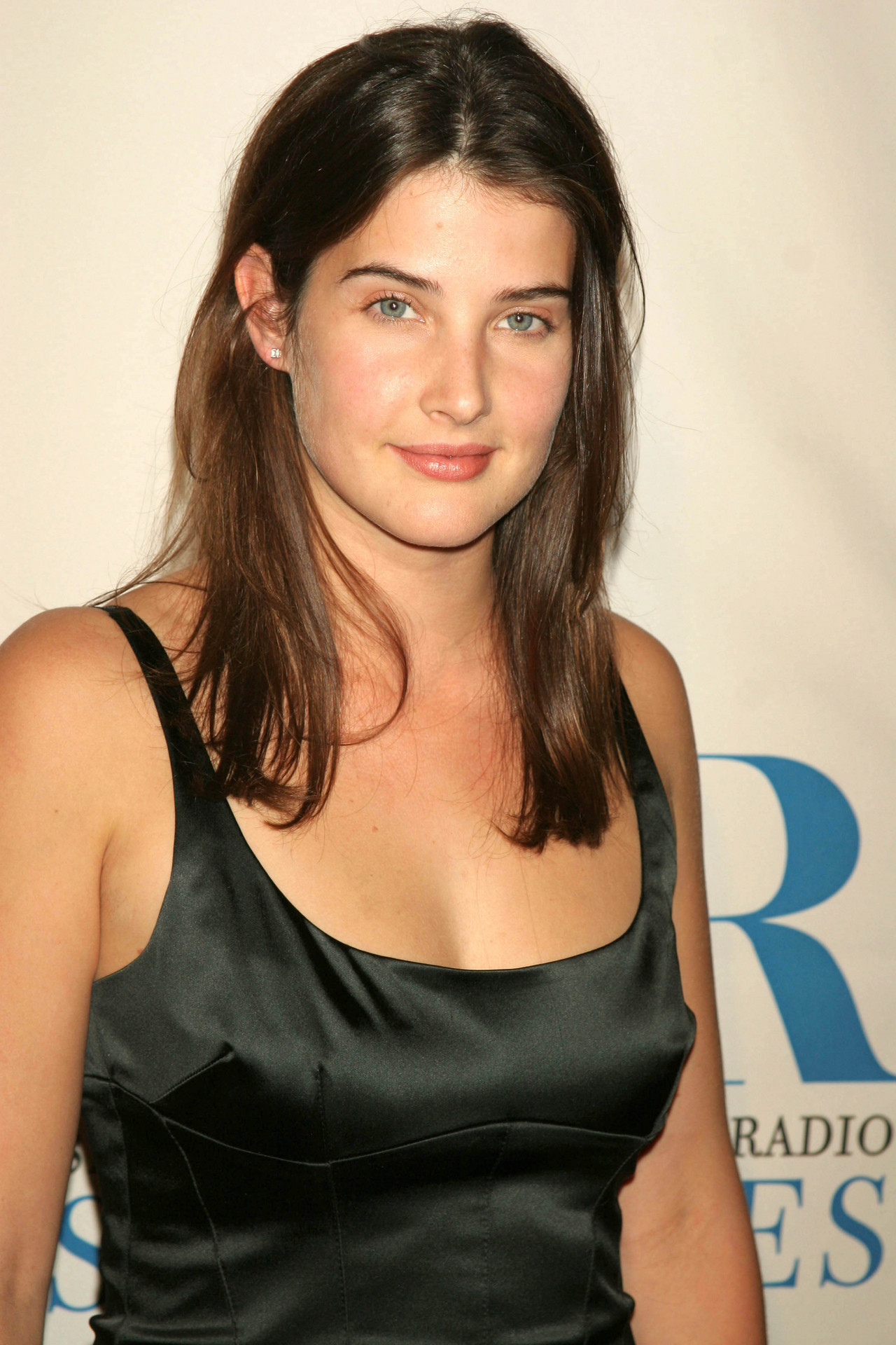 Young Cobie Smulders naked (39 photo), Pussy, Hot, Twitter, cleavage 2020