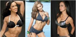 31 Hottest AJ Lee Bikini Pictures Will Make You Melt Like An Ice Cube