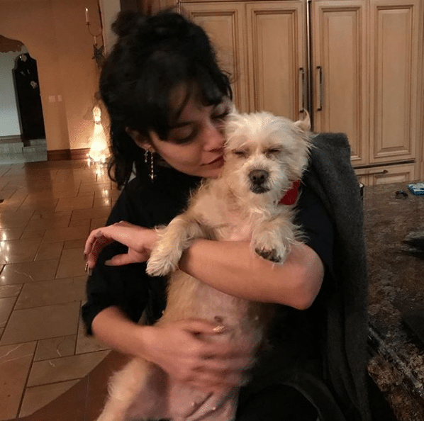 vanessa hudgens dog lover