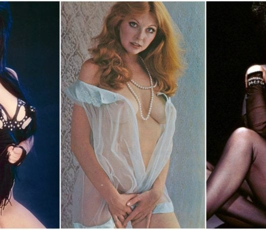47 Hot Pictures Of Cassandra Peterson - Elvira, Mistress of the Dark