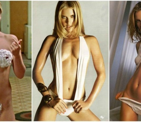 48 Hot Pictures Of Ali Larter Will Take You To The Final Destination
