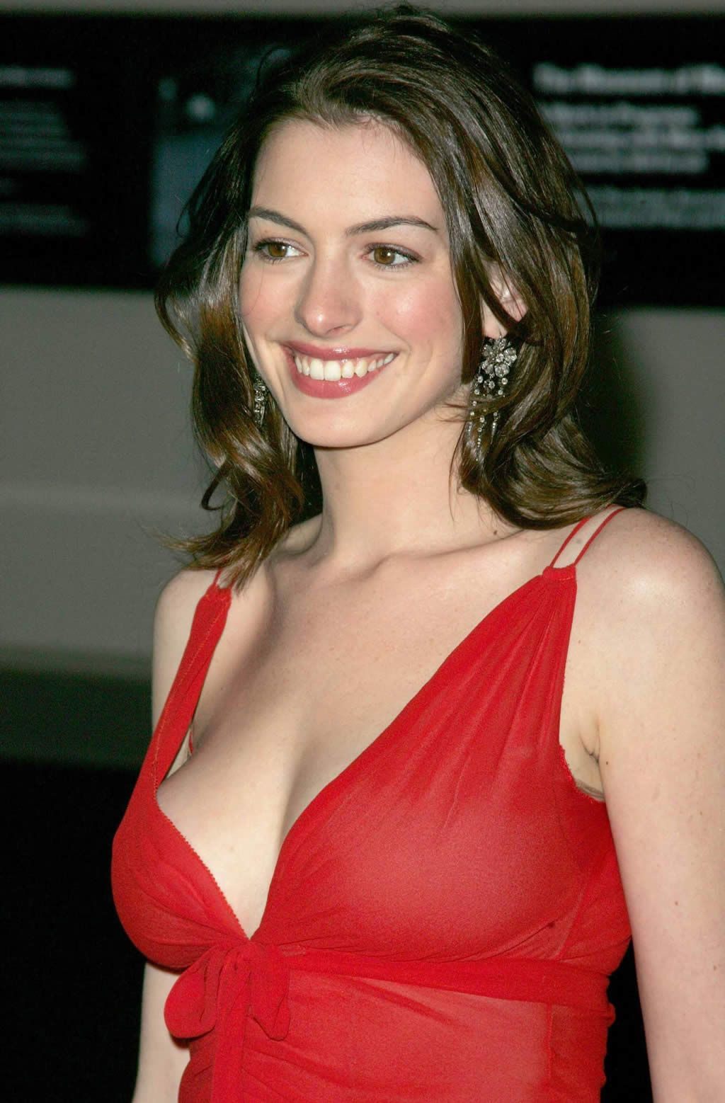 70+ Hot Pictures Of Anne Hathaway Are Here To Prove She Is ...