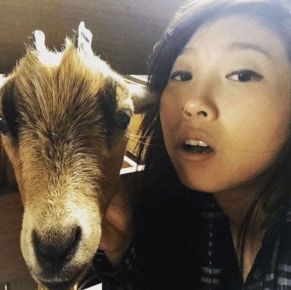 awkwafina animal lover