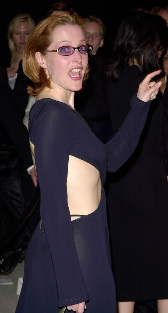 gillian anderson say something