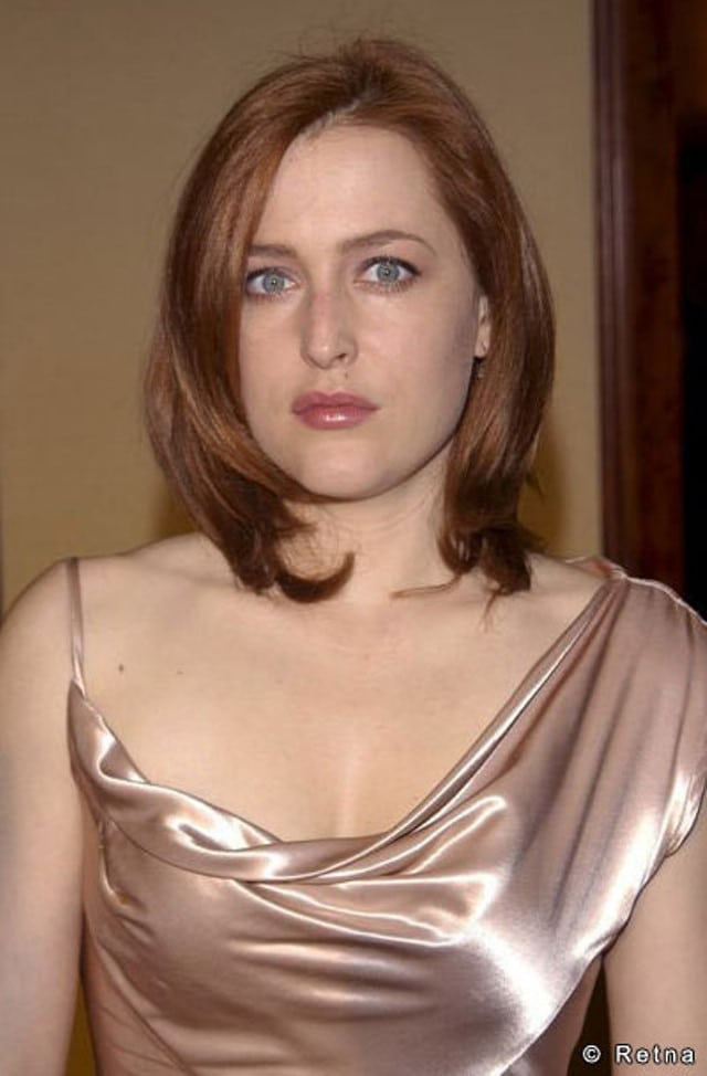 gillian anderson silk dress