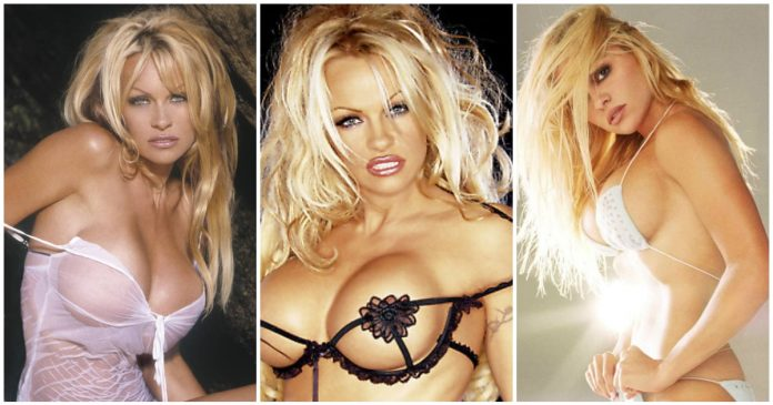 48 Hot Pictures Of Pamela Anderson Explore Her Sexy Body