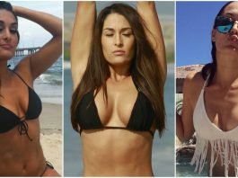 48 Hot Pictures of Brie Bella Will Drive You Nuts For Her