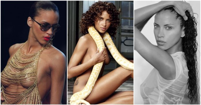 41 Hot And Sexy Pictures Of Noemie Lenoir Will Get You Hot Under Your Collars.