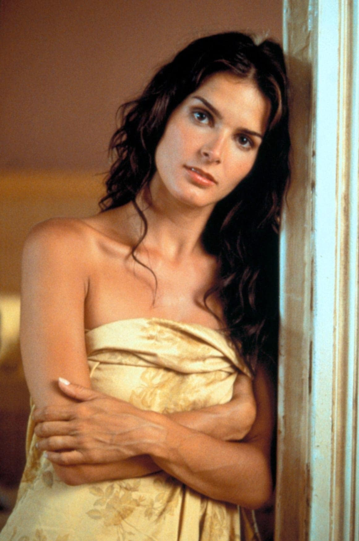 Angie Harmon Xnxx 61 hot and sexy pictures of angie harmon are hypnotising to