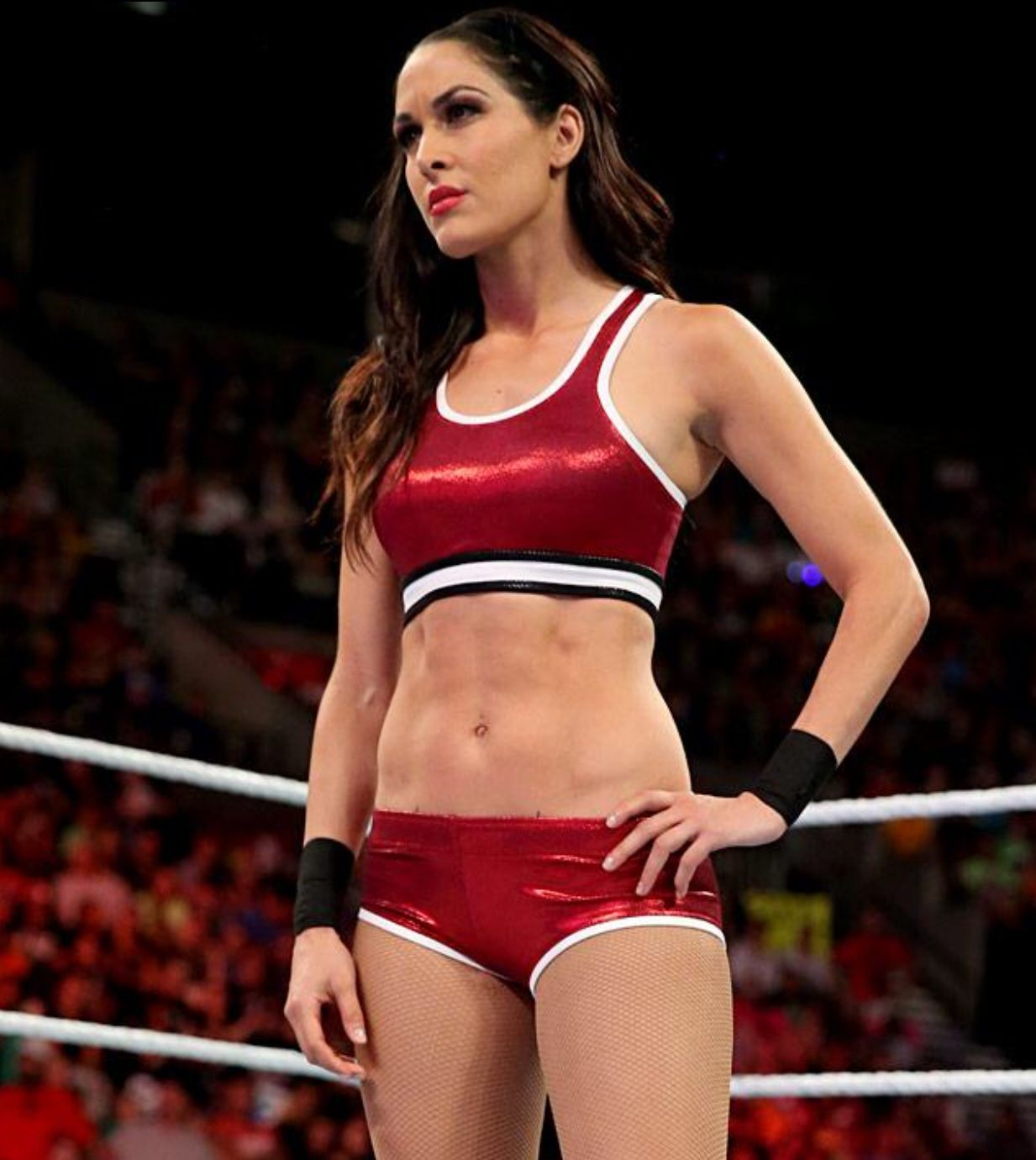 brie bella too sexy