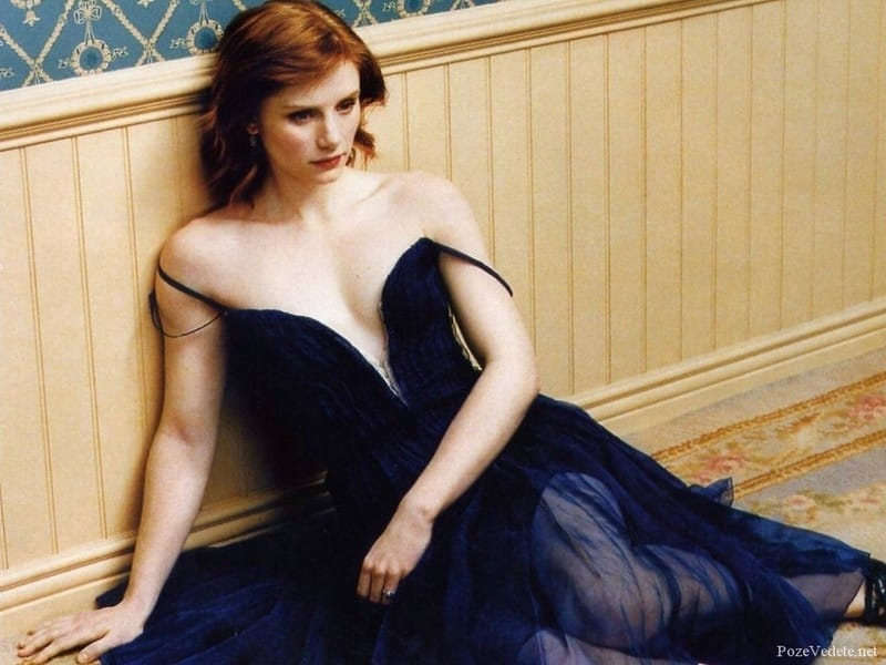 bryce dallas howard cleavages hots