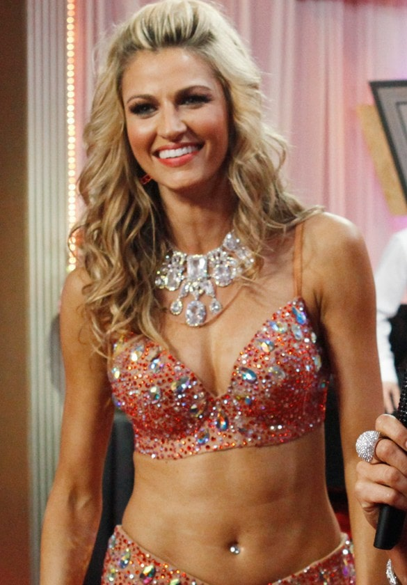 Erin Andrews Sports Reporter Nude Video