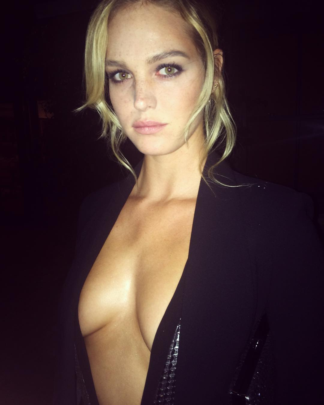 erin heatherton cleavage pictures