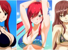 49 Hot Pictures Of Erza Scarlet from Fairy Tale Which Will Leave You Dumbstruck
