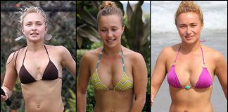 49 Hot Pictures Of Hayden Panettiere Which Will Rock Your World