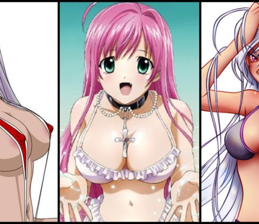 49 Hot Pictures Of Moka Akashiya from Rosario + Vampire Are Just Too Damn Sexy