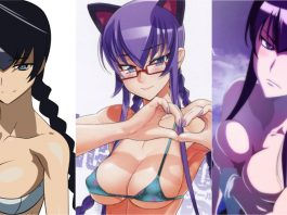 49 Hot Pictures Of Saeko Busujima from High school of the Dead Which Are Sure To Win Your Heart
