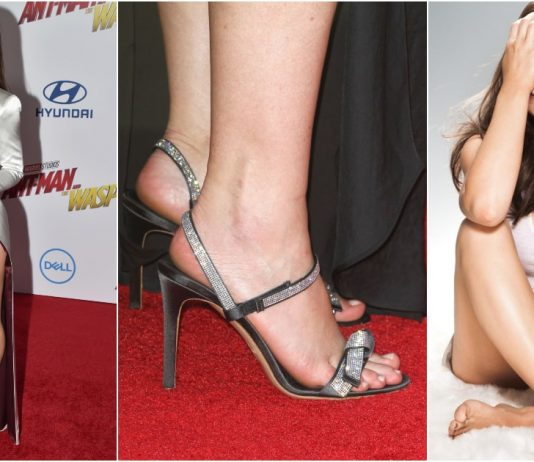 49 Sexy Evangeline Lilly Feet Pictures Which Are Stunningly Ravishing
