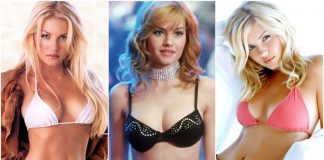 The hottest images and pictures of Elisha Cuthbert are a delight for fans. While we are talking about her beauty, skills and professional life, we want to now take you on a ride through an Elis
