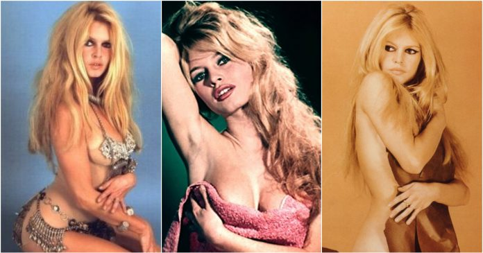 49 Hot Pictures Of Brigitte Bardot That Will Make Your Day