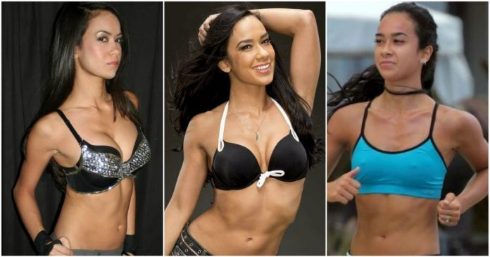 49 Sexy AJ Lee Boobs Pictures Which Are Stunningly Ravishing