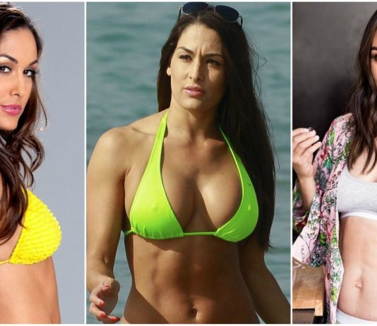 49 Sexy Brie Bella Boobs Pictures Which Are Sure to Catch Your Attention