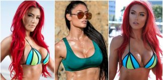 49 Sexy Eva Marie Boobs Pictures Which Are Sure To Win Your Heart Over