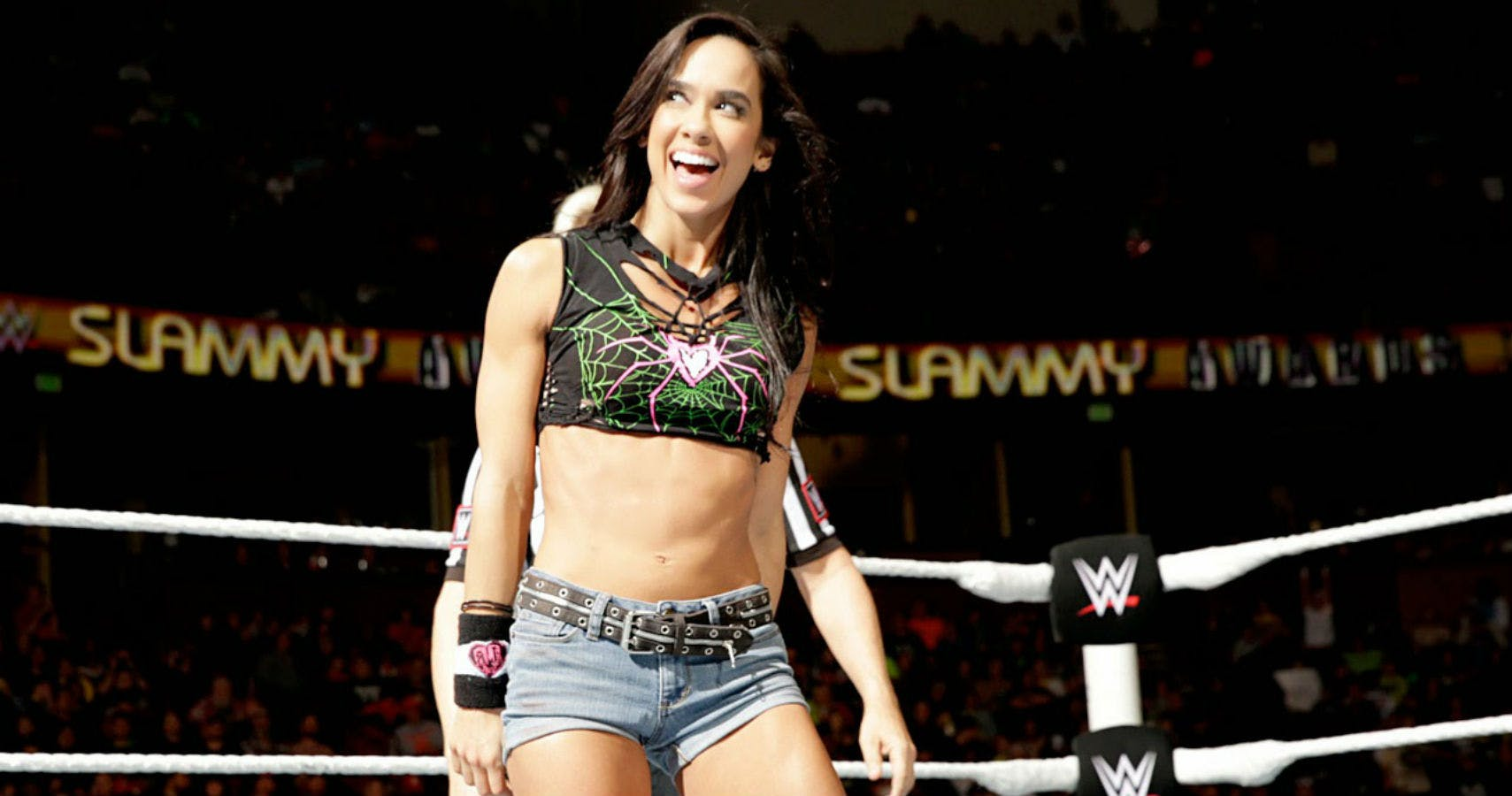 AJ Lee awesome photos