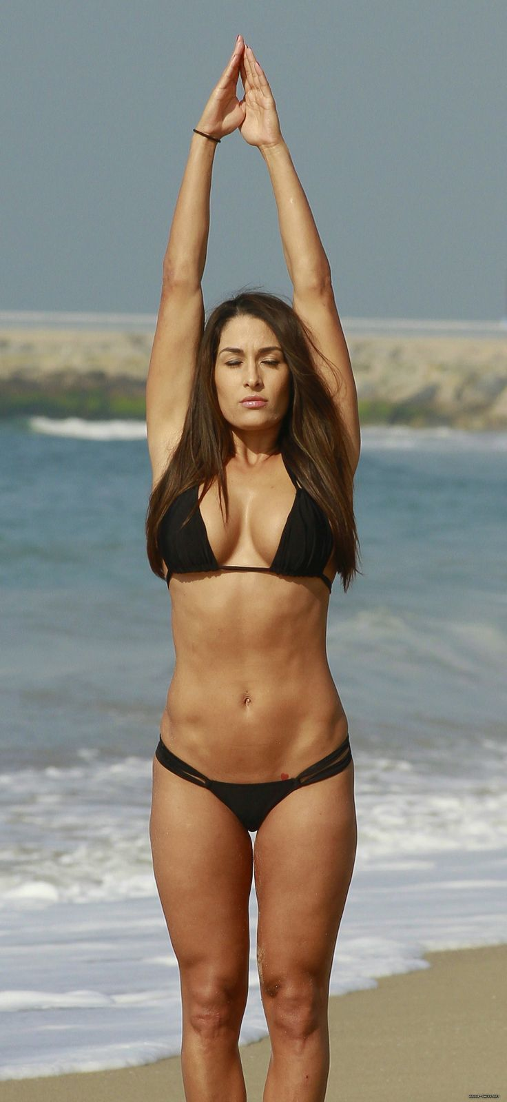 Brie Bella hot bikini look