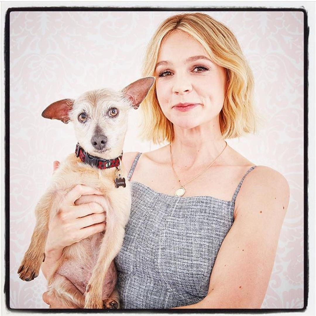 Carey Mulligan with Puppy