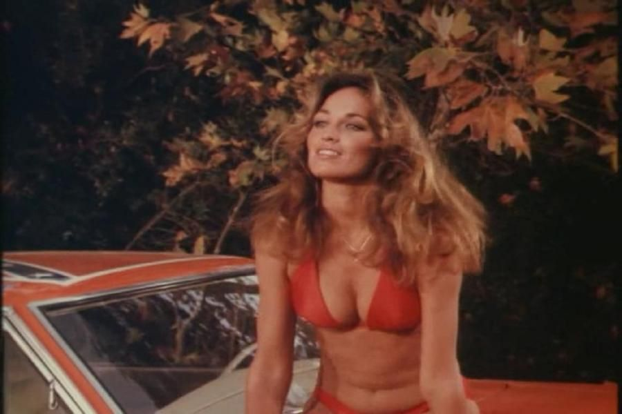 Catherine Bach hot lady pic