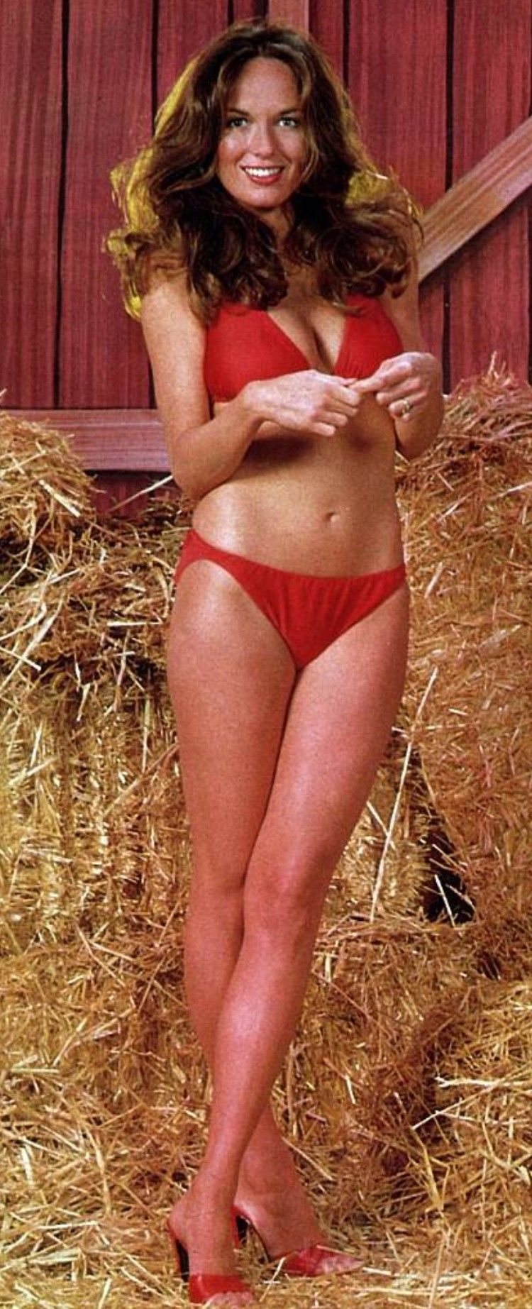 Catherine Bach hot picture