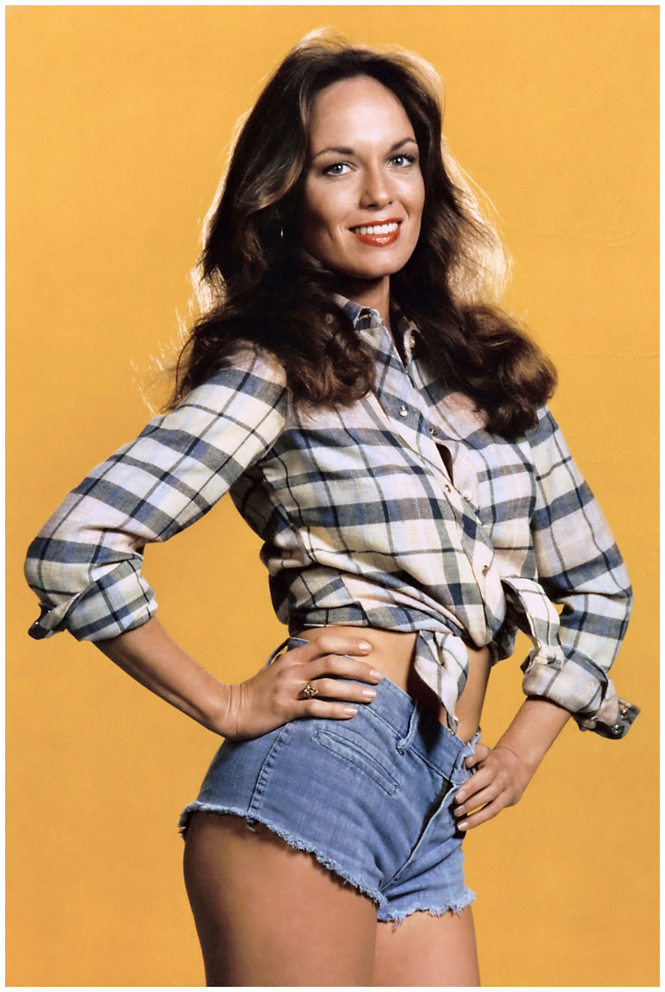 Catherine Bach sexy pic