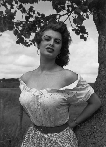 49 Hot Pictures Of Sophia Loren Which Will Make You Restless-7464