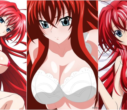 49 Sexy Rias Gremory From The Anime High School DxD Boobs Pictures Are Here To Take Your Breath Away
