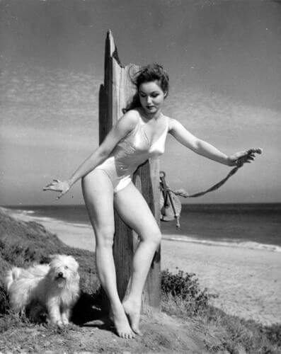 Hot Pictures Of Julie Newmar Will Make You Want Her Now