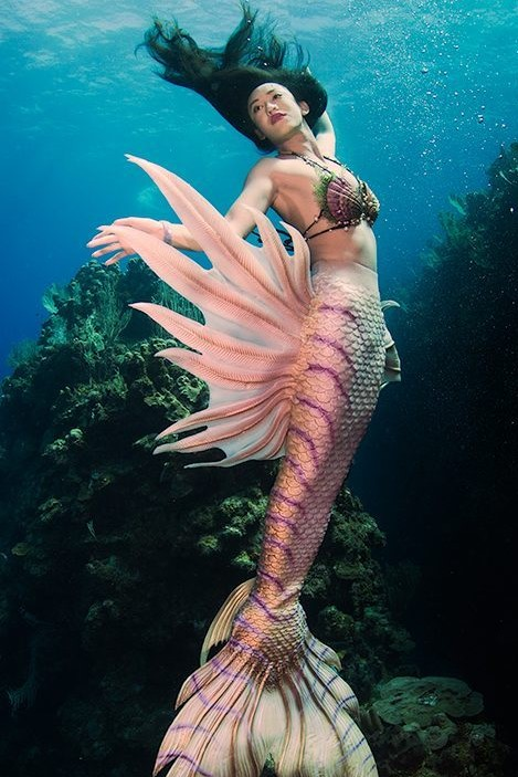 Mermaid super sexy photo