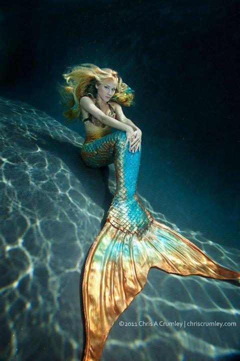 Mermaid too sexy