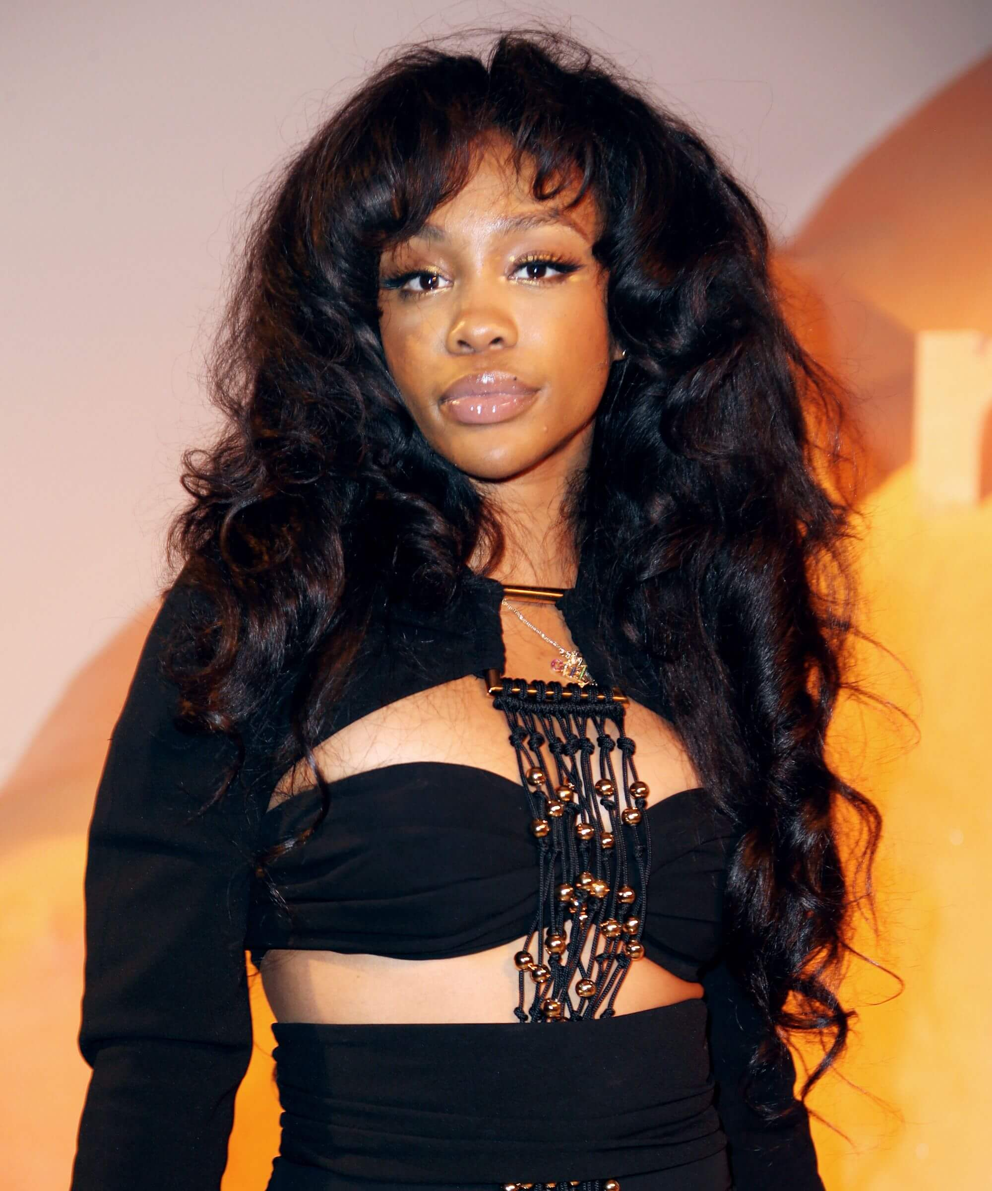 Sza hot picture (3)