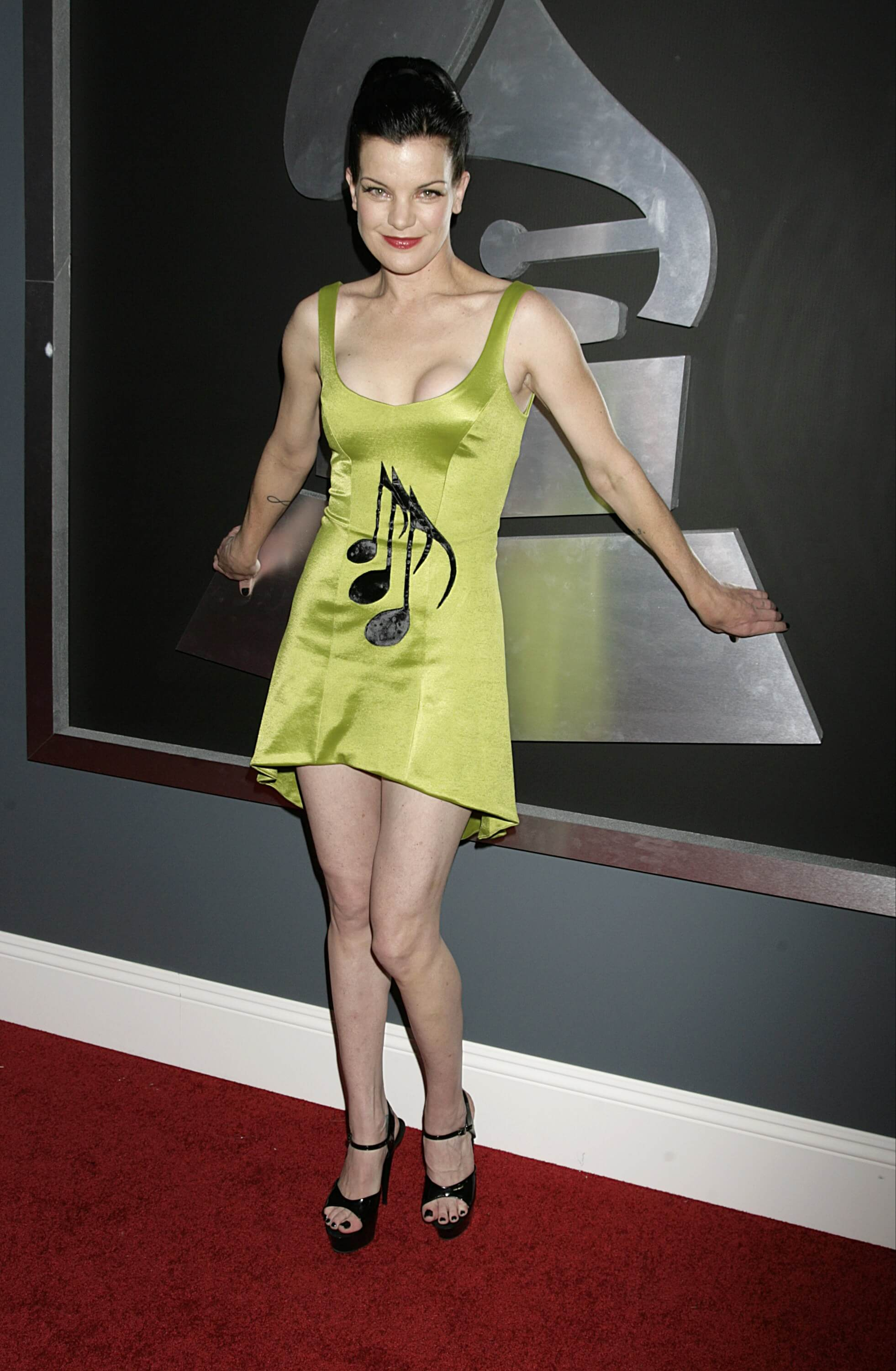 pauley perrette feet
