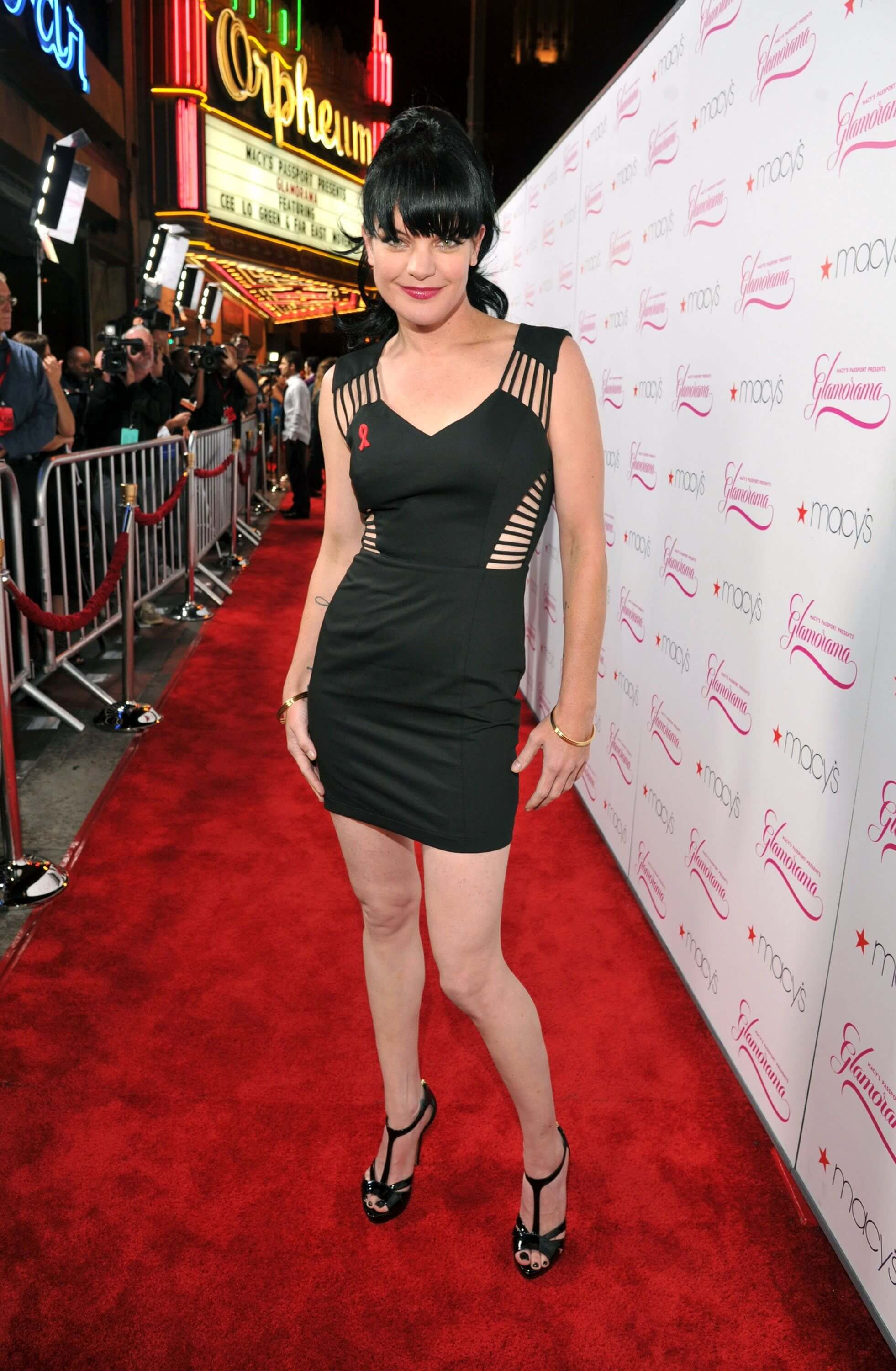 pauley perrette red carpet