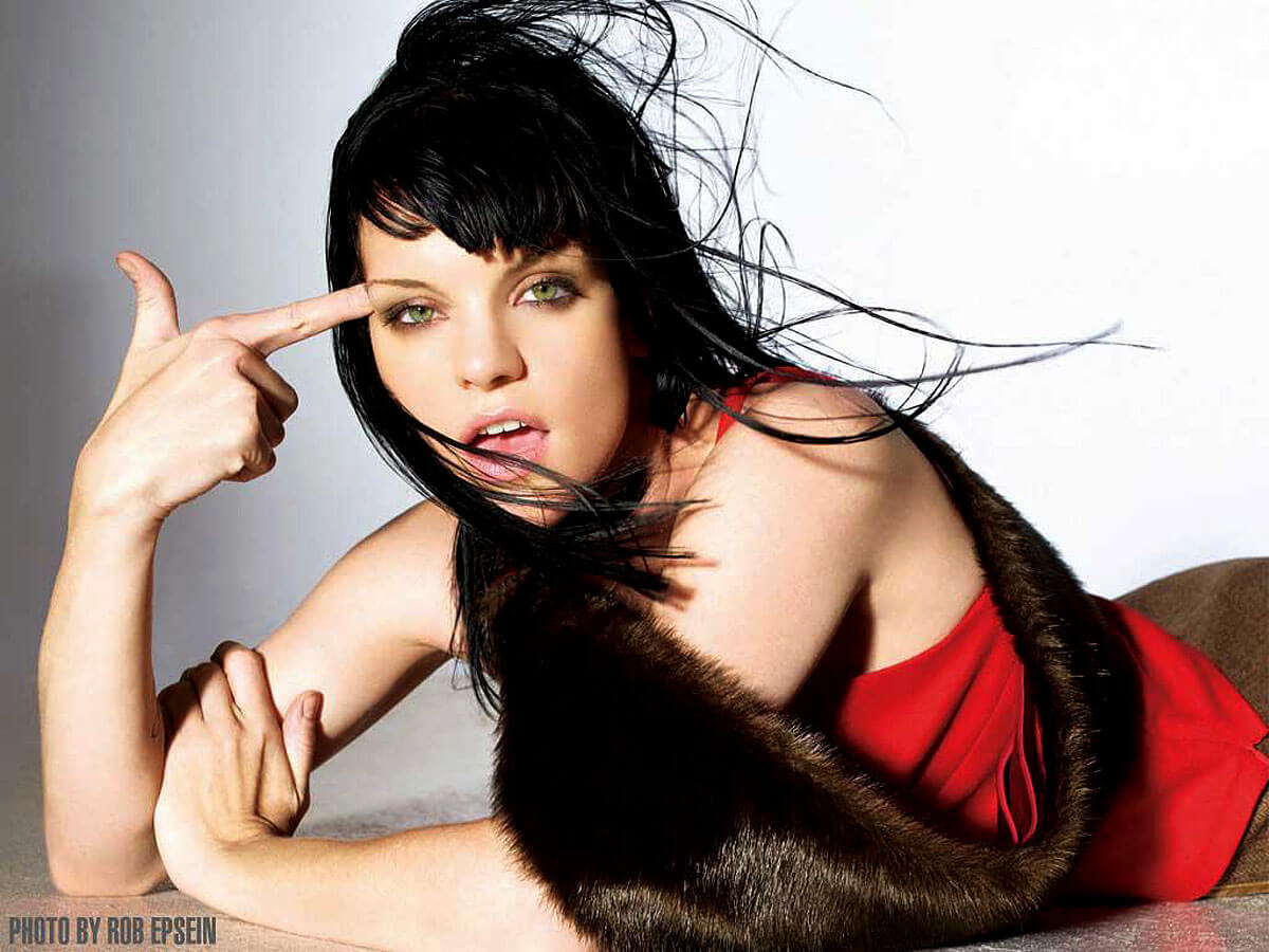 pauley perrette too hot