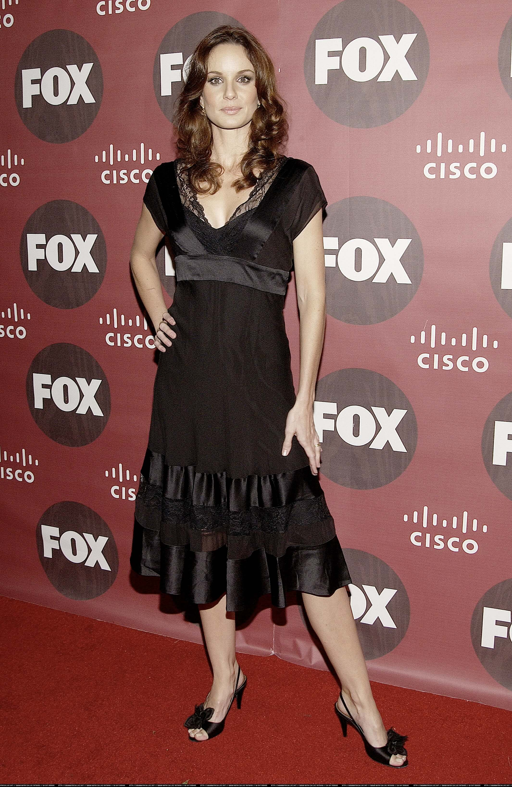 sarah wayne callies black dress