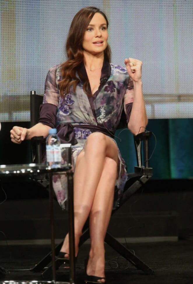 sarah wayne callies say something