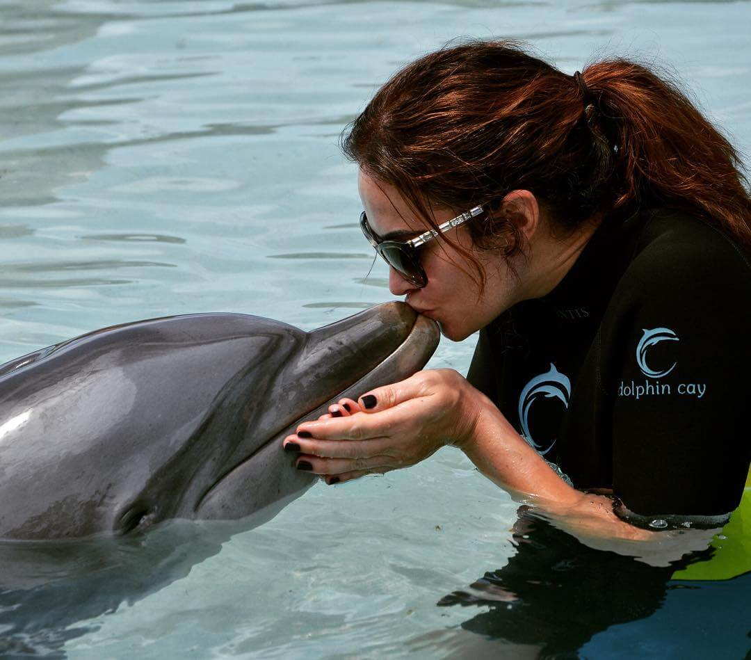 tiffany fallon with dolphin